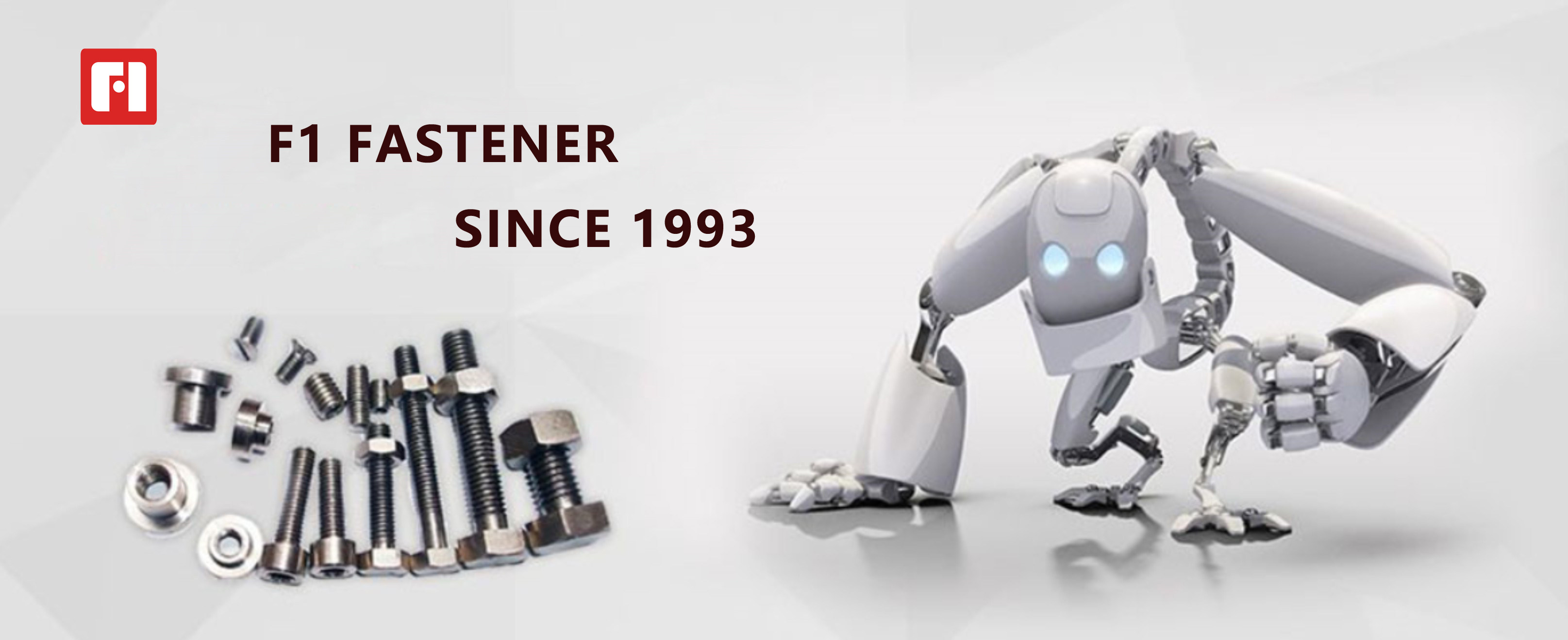 introduction of F1 fastener